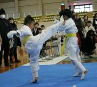 第6回武神杯実戦空手道選手権大会 結果 (2017.1.22)の画像