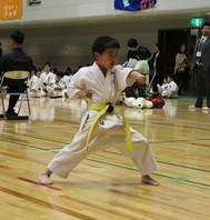 第12回北部九州王座争奪空手道大会 結果 (2016.4.17)の画像