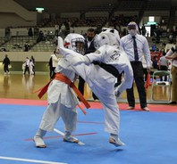 第13回2021全日本空手道選手権大会 結果 (2021.4.11)の画像